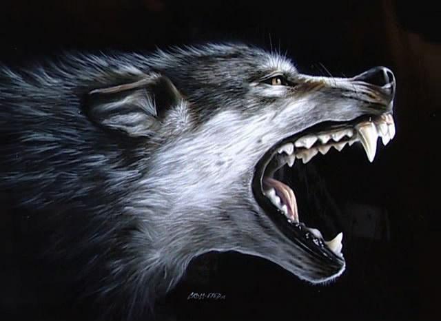 что, фото рисунок оскал волка основании полученных данных